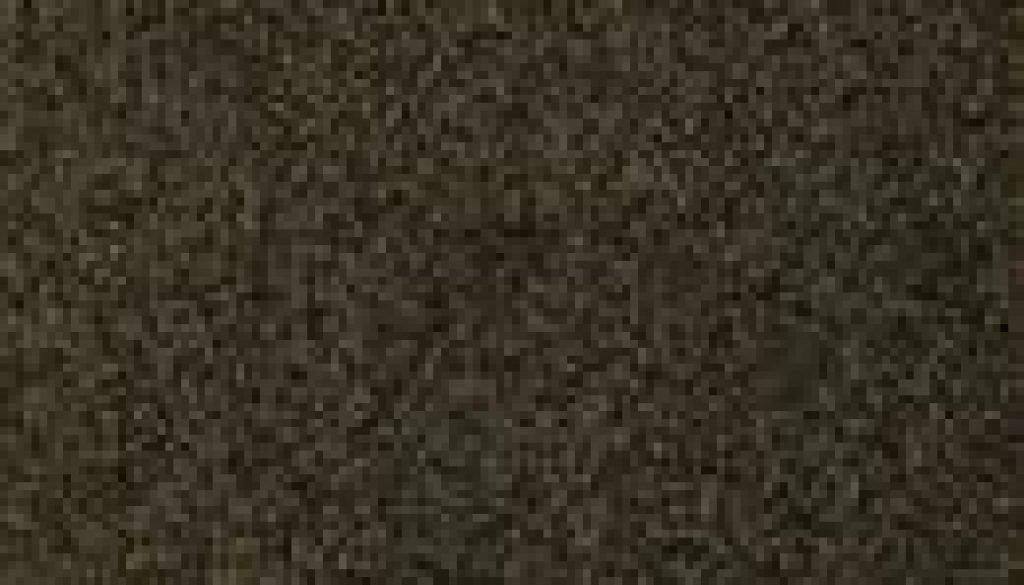 9255--TIMELESS9255_130x130