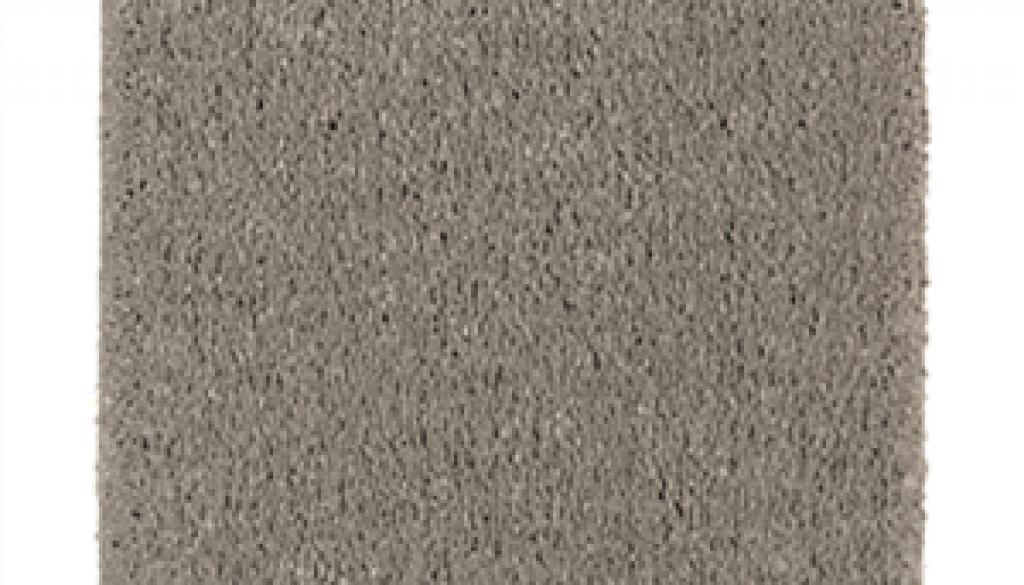 Silver Oak 3229
